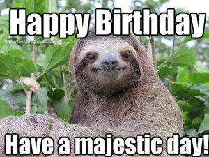 Happy birthday meme have a majestic day……